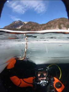 ice diving avoriaz Stephanie koca